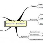 Mindmap-Bakterien2-GRGORG22